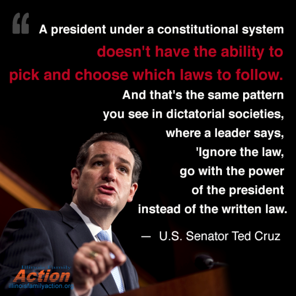 Ted Cruz on constitution_Quote - Web