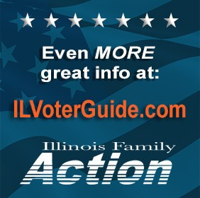 IFA-Voter-Guide-online-282x280